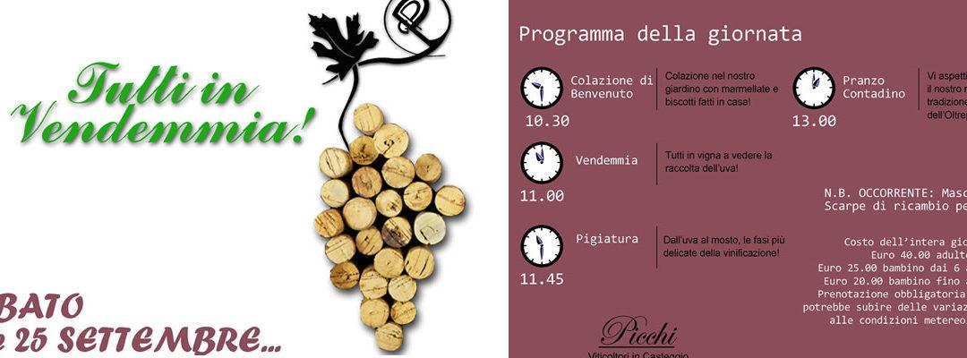 Sabato 25 settembre – Secondo appuntamento con TUTTI IN VENDEMMIA 2021 alla Cantina Picchi
